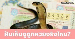 Huayทำนายฝัน ฝันเห็นงู หมายถึงอะไร พร้อมตัวเลขเด็ดคอหวยห้ามพลาด!